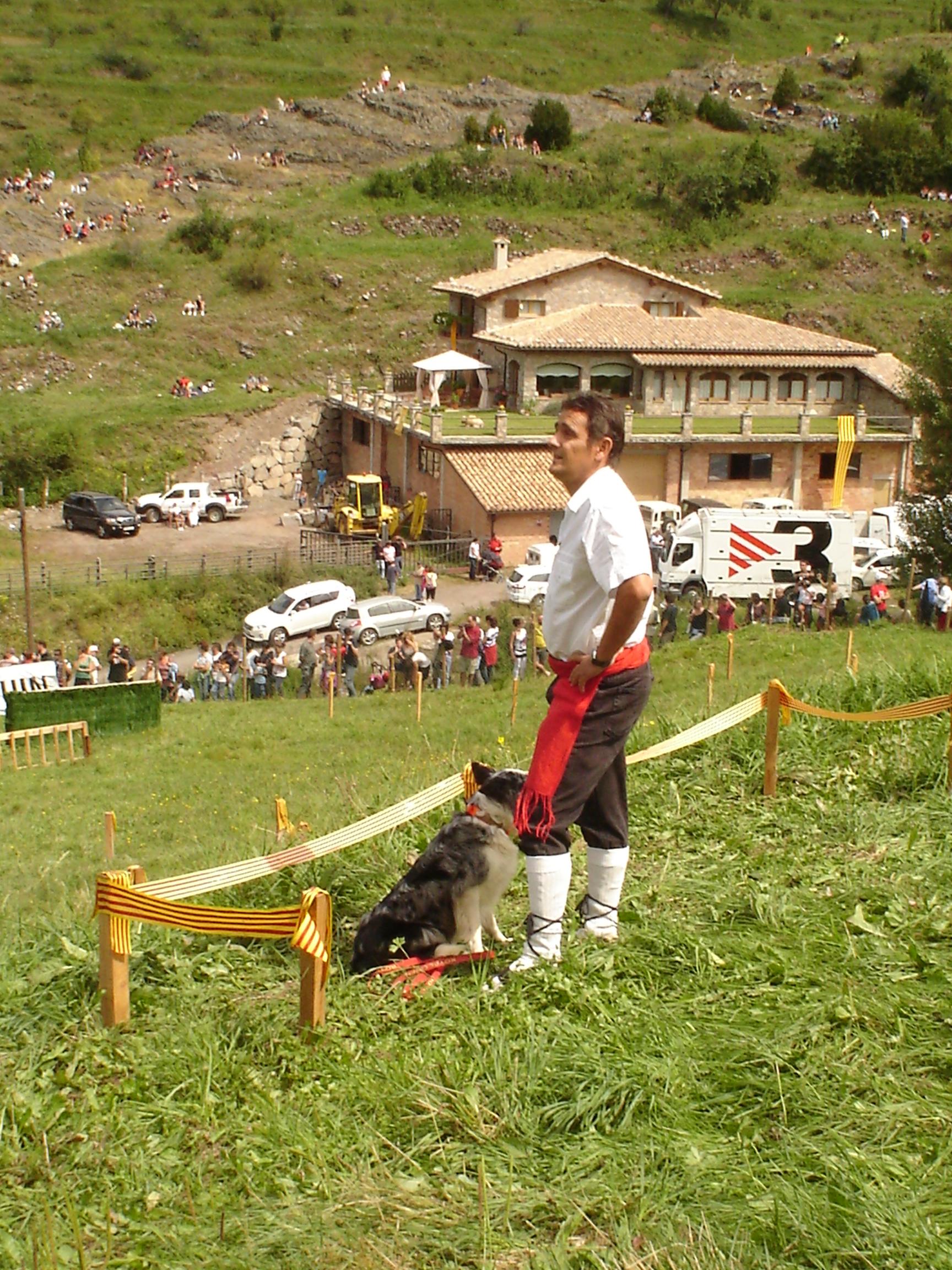 concurs gossos atura 2011 117